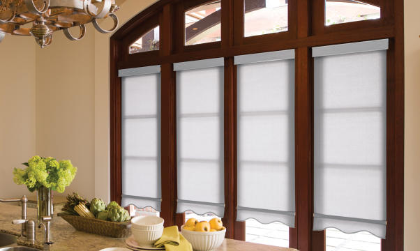 Levolor Roller Blinds and Shades